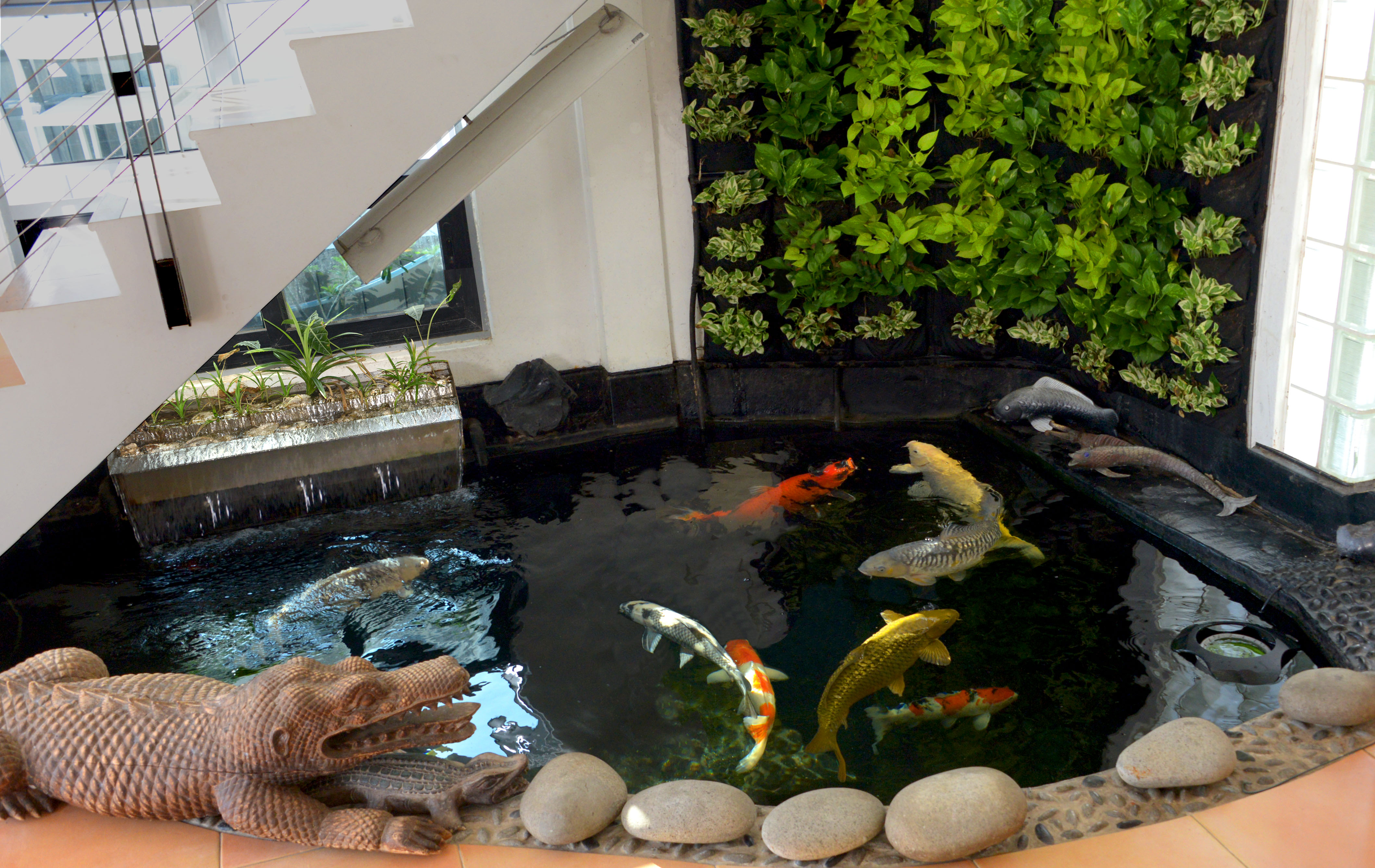 Is my home suitable for a koi pond get some answers here for Koi carp pool design